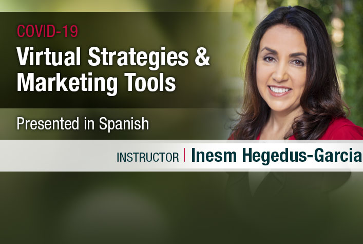 webinar - virtual strategies & marketing tools in Spanish